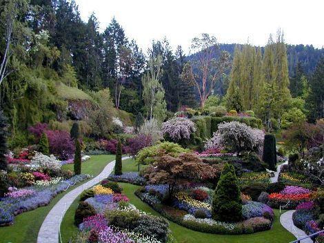 Dites le avec les fleurs avec leur langage for Fleurs et jardins